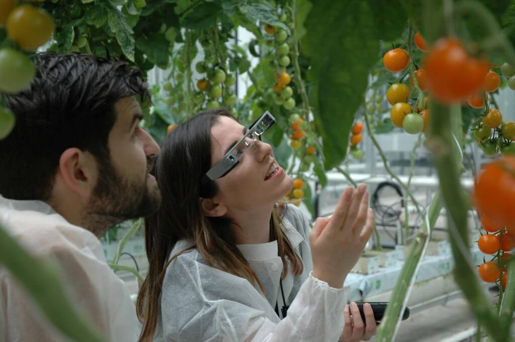 Augmented Horticulture - Smart glasses in kas (19)